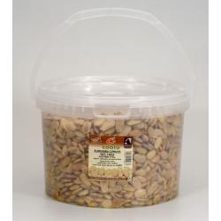 Almendra comuna repelada frita con sal - Coato - Cubo 5 kg